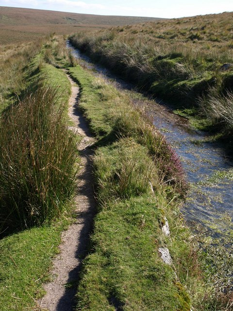 Path by Devonport Leat