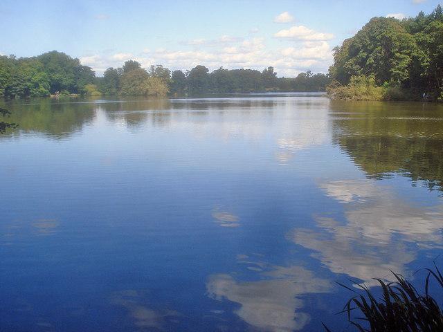 Willesley Lake - 1