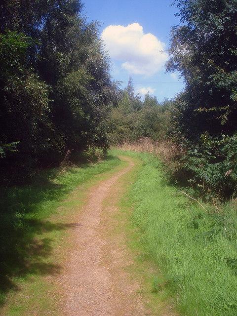 Path in Oakthorpe Picnic Area