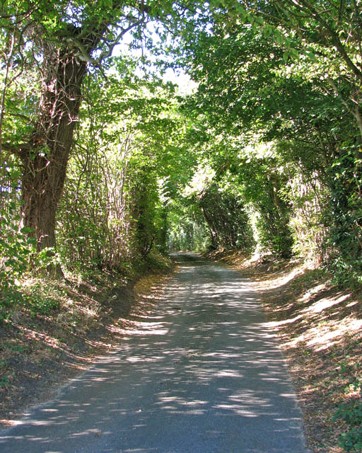 Woolner's Lane