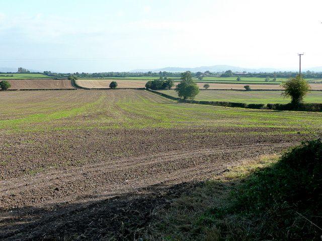 Footpath through farmland