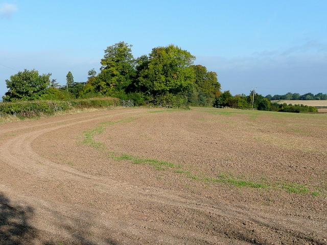 Deerhurst Walton field-edge
