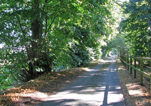 View east along Fox Lane