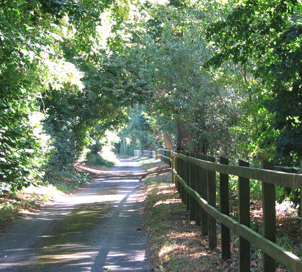 Fox Lane past Framingham Manor