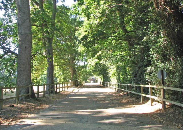 Driveway to Manor Farm and Manor Farm Barns