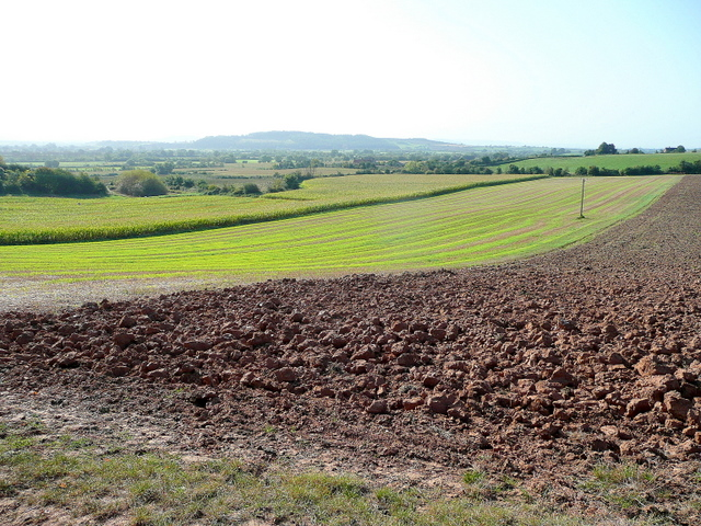 Farmland south of Tirley Hill