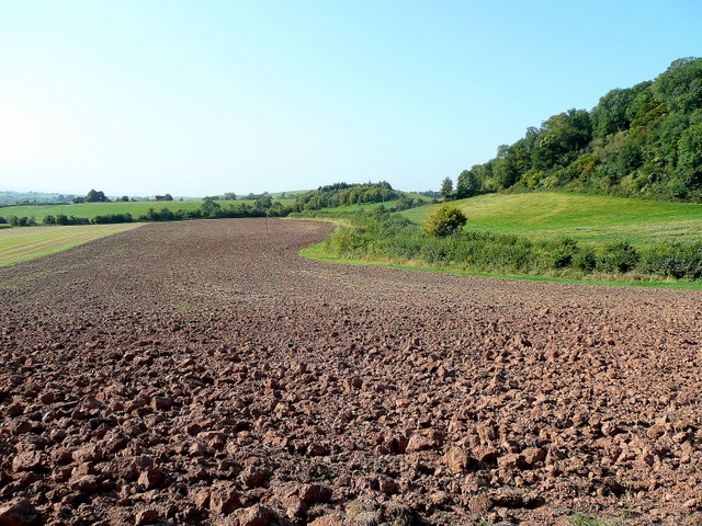 Looking south towards Hasfield