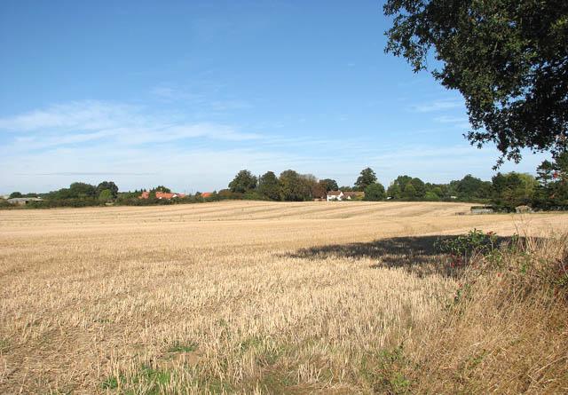 Stubble field beside Sallow Lane