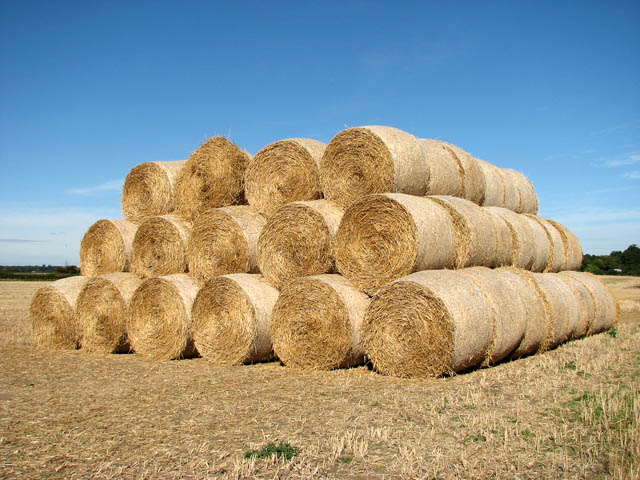 A stack of straw bales