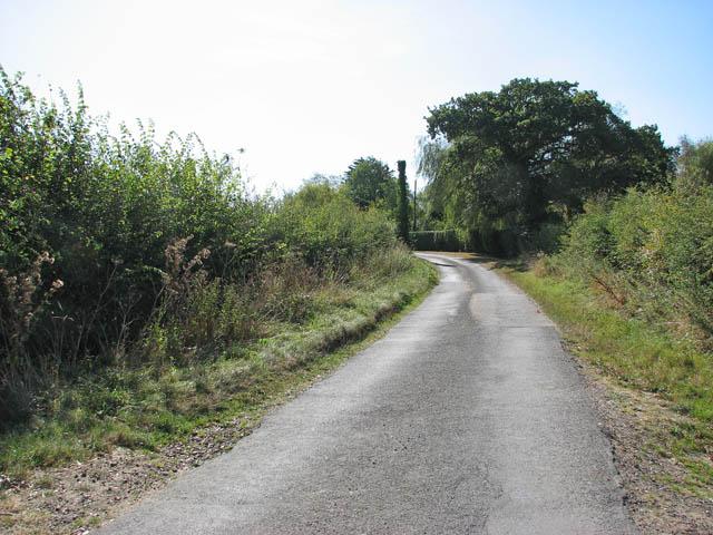 View south along Sallow Lane