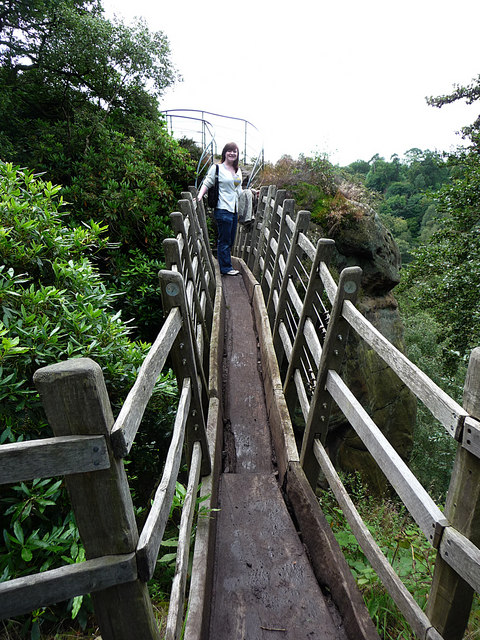 The Swiss Bridge, Hawkstone Park
