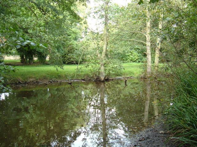 River Derwent near Ayton Bridge