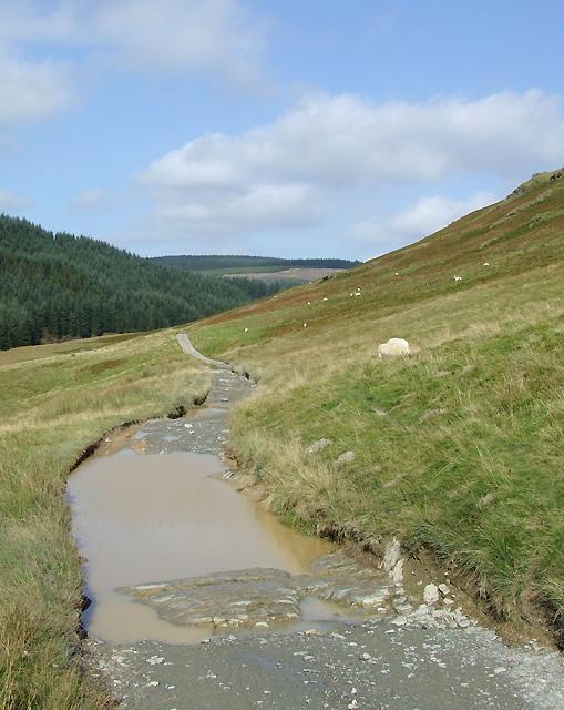 Drover's road, upper  Cwm Tywi, Powys