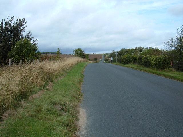 Yedmandale Road