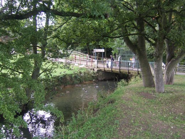 River Trent in Bucknall Park
