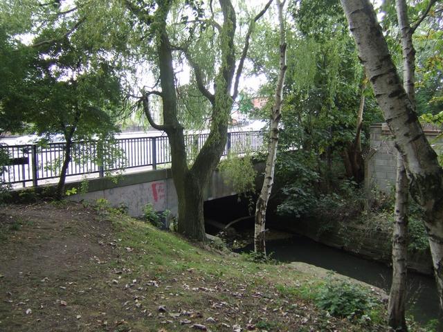 River Trent leaving Bucknall Park
