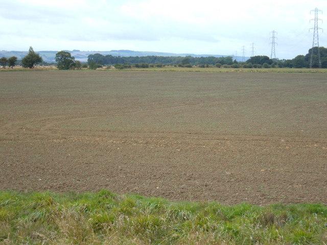 Farmland South of Darrell's Low Farm