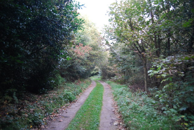 Greensand Way, Crockham Hill Common