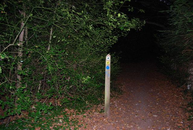Waymarker, Greensand Way, Crockham Hill Common