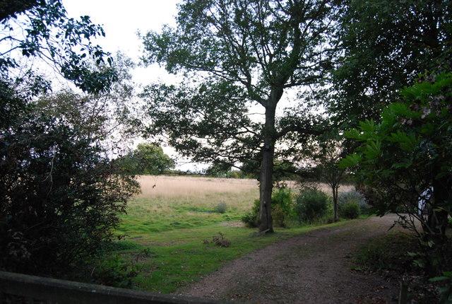 Crockham Hill Common