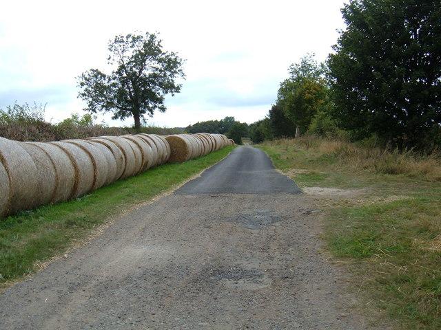 Tetherings Lane