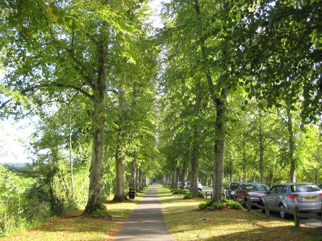 Arundel: Mill Road