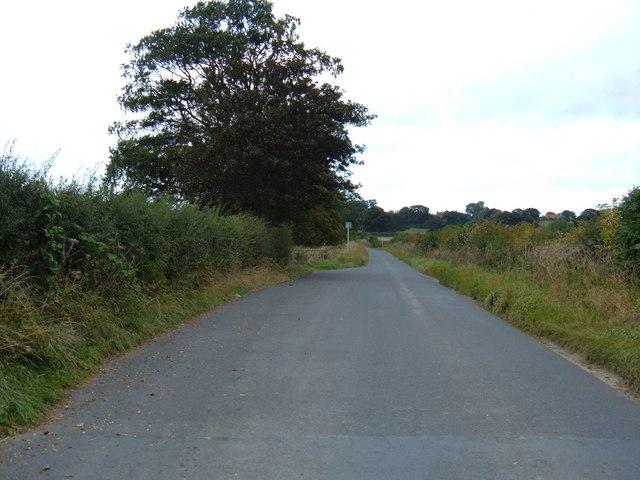 Minor Road Towards Hutton Buscel