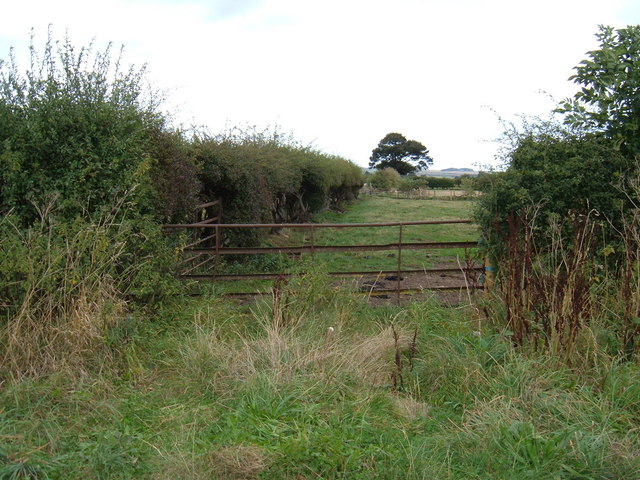 Field Entrance South East of  Hutton Buscel