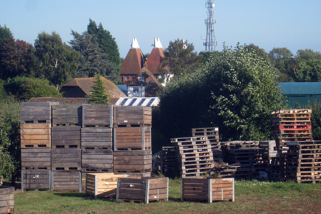 Apple Boxes at Nickle Farm