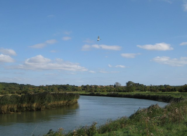 River Arun at Arundel and a little egret