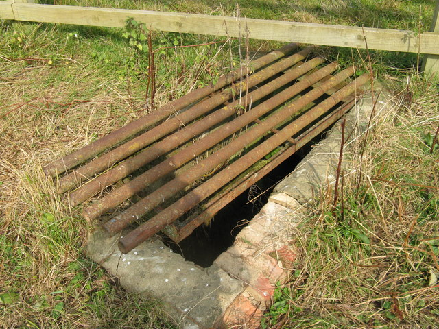 Grill covering open ditch