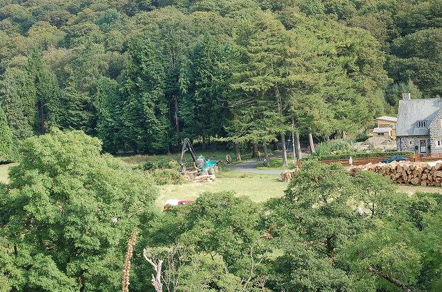 Tree-eating machine, Elan Village