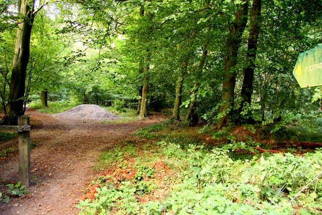 Footpath at the Aston Rowant Nature Reserve