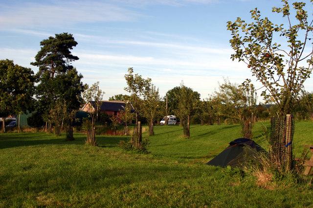 Camping field at Lower Porthamel Farm