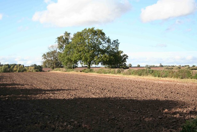 Ploughed fields from the roadside