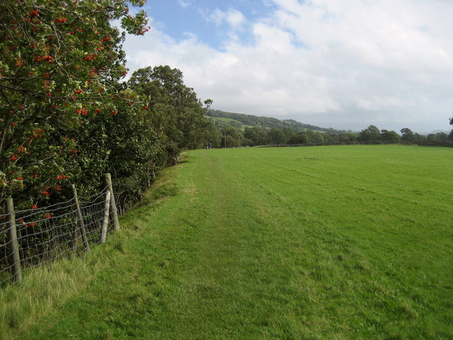 Pennine Way between Newbiggin and Holwick