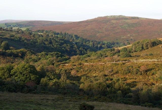 O Brook and West Dart valleys
