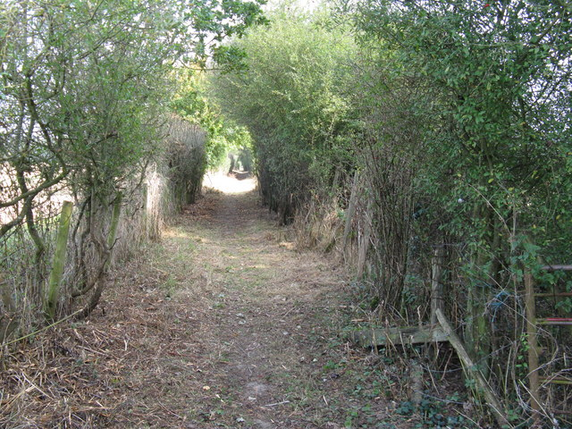 Recently cleared bridleway to Lower Barn Farm