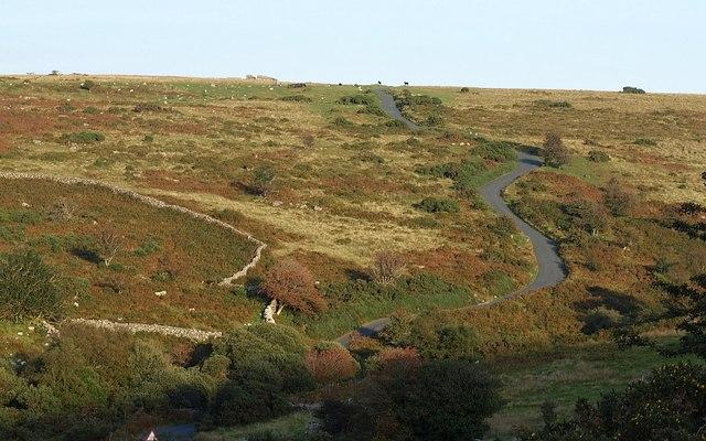 Hillside above O Brook