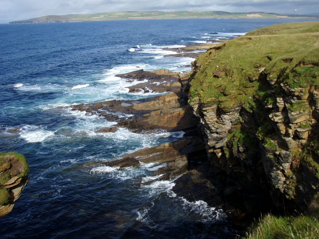 Muckle Head