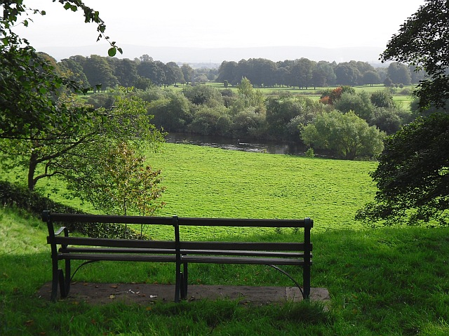 Bench with a view, Rickerby Park