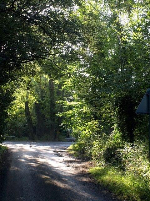 Prestwood Lane