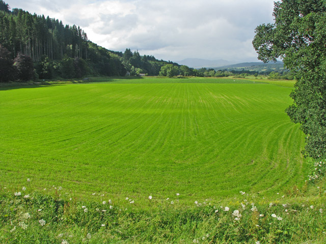 Cultivated level field on the floodplain of the Tay