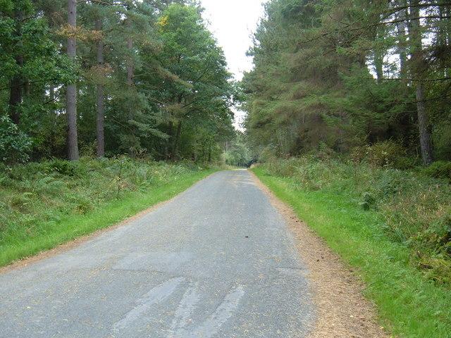 Moor Lane towards Granary Farm