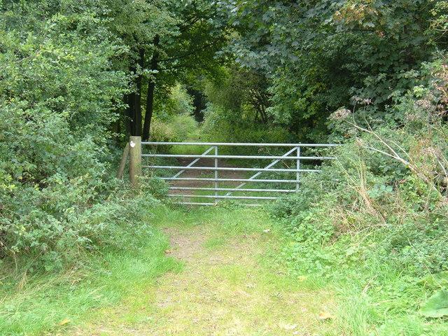 Gated Entrance to Woodland