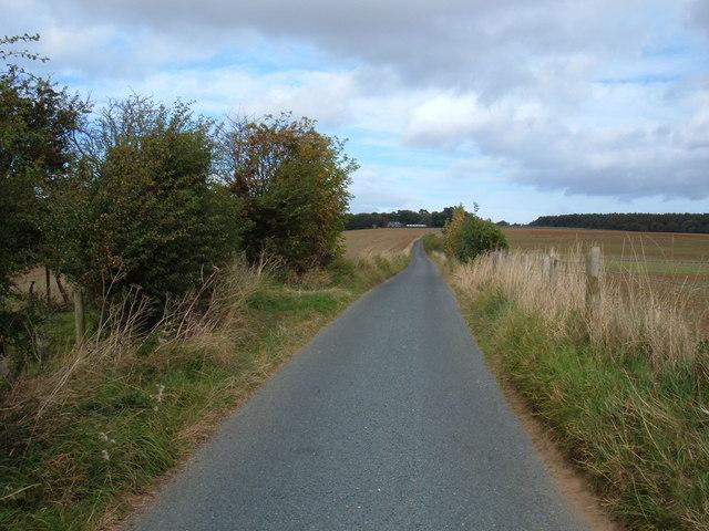Moor Lane North of East Ayton