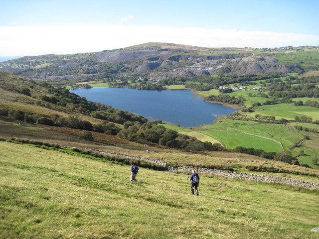 Rough field above Llyn Nantlle Uchaf