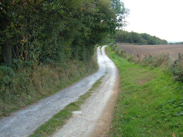 Track to  Osborne Lodge
