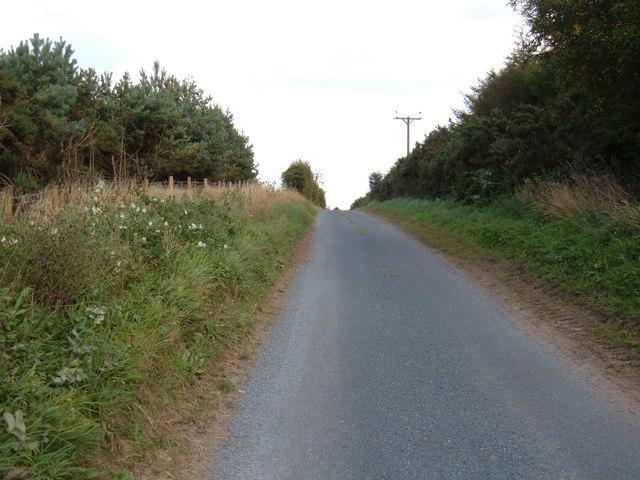 Lane near Riggs Head Farm