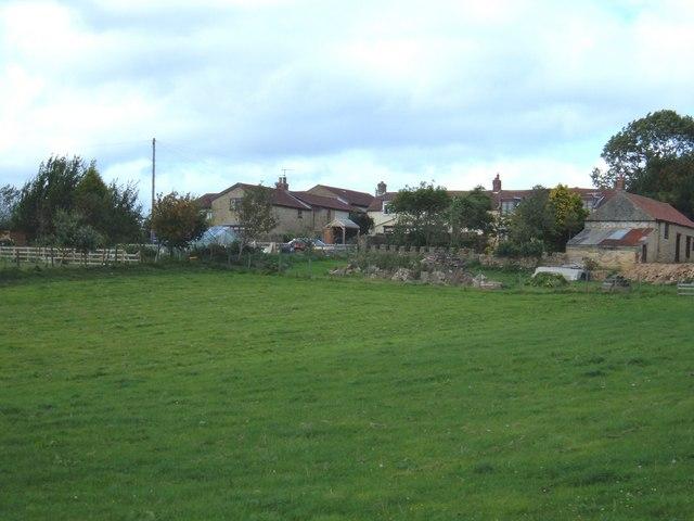Riggs Head Farm